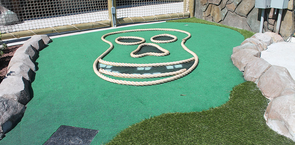 Putt Putt hole with face
